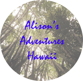 alisons adventures copy