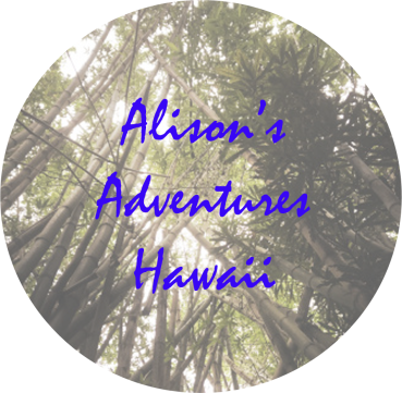 alisons adventures copy