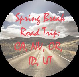 spring break road trip copy