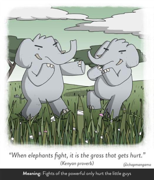 elephantfight-5a135e441dce4405ca6cb872ff491403