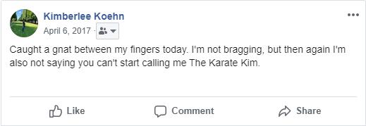 2017 karate kim